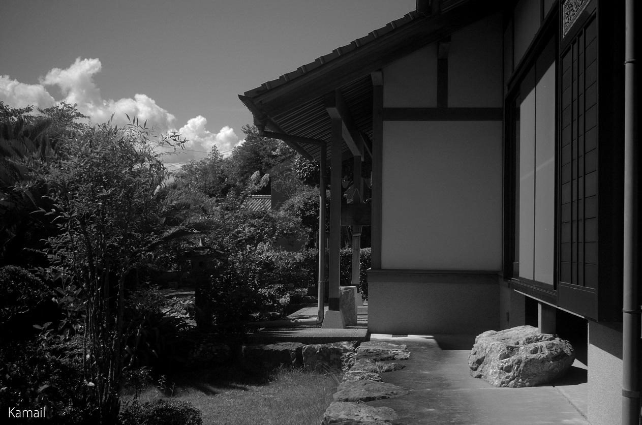 Monochrome Photo Gallery Jinjy...